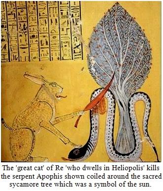 Apep Re Cat