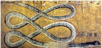 Apophis Coils Loops