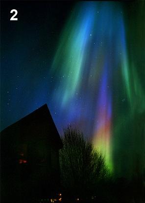 Aurora Amum Amon