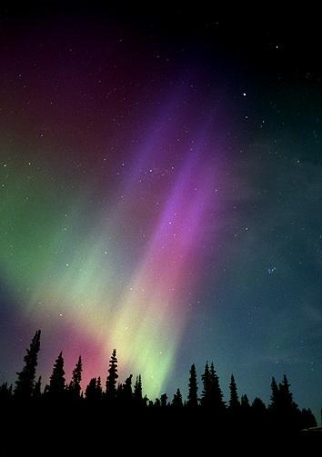 Aurora Borealis Egyptian