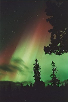 Auroral Lights Amun