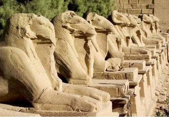 Avenue Of Sphinx Amun