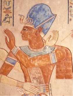 Blue Crown Pharaoh