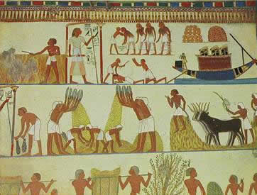 Typical Egyptian Afterlife Scene