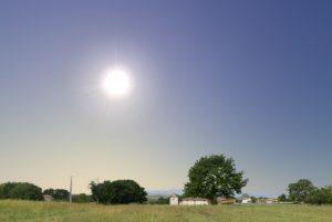 glaring-sun-3