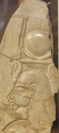 Nefertiti Comet Venus
