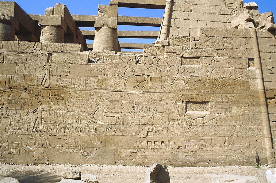 The battles of the pharaohs